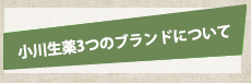 小川生薬3つのブランドについて