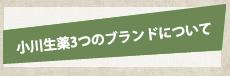 小川生薬4つのブランドについて